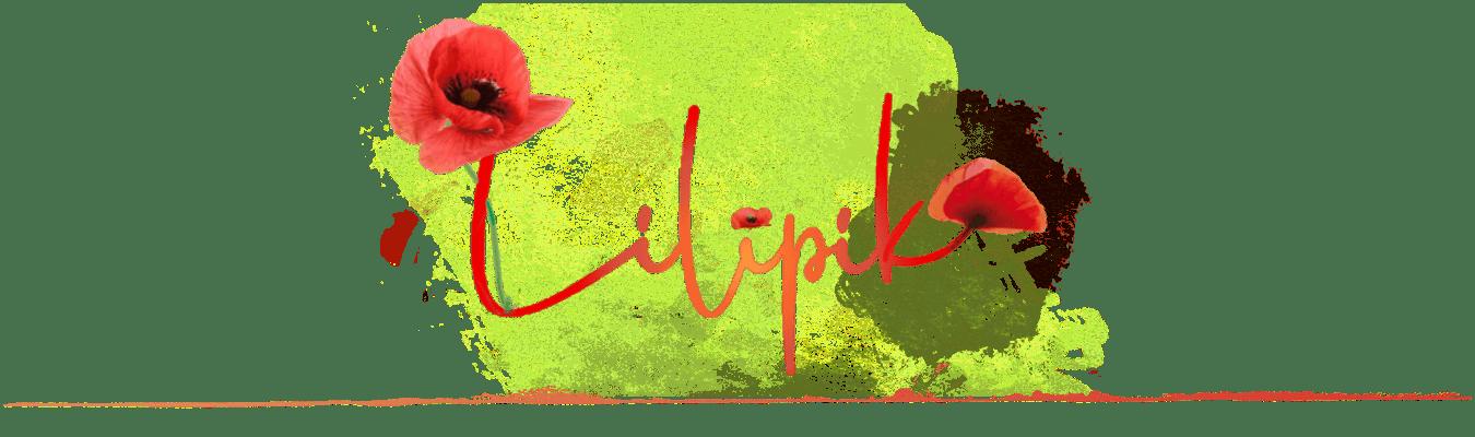 Lilipik Créations Artisanales Ecoresponsables